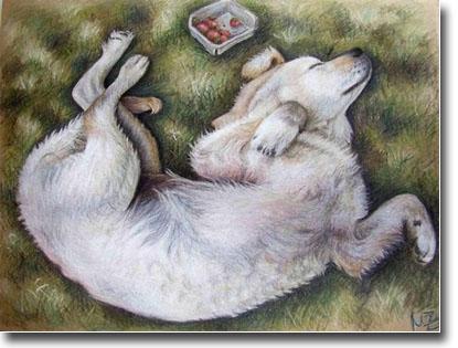 golden retriever puppy running. Golden Retriever Puppy Art