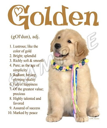 Golden retriever gifts greeting cards notecards price 1699 6 greeting cards w envelopes golden retriever m4hsunfo