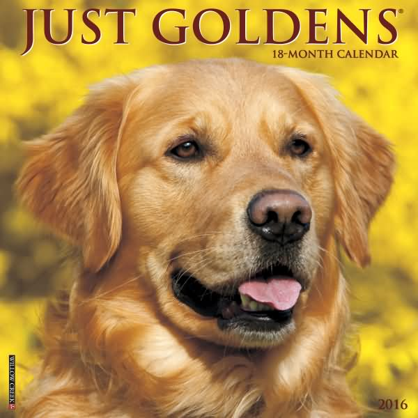 Golden Retriever Gifts Golden Retriever Calendars